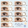 [Contact Lenses] Ever Color 1day Natural / Moist Label UV [20 lenses / 1Box ] / Daily Disposal  Colored Contact Lens DIA14.5mm<!-- エバーカラーワンデーナチュラル モイストレーベルUV (1箱20枚入) □Contact Lenses□ -->