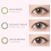 [Contact lenses] RICH STANDARD [10 lenses / 1Box] / Daily Disposal Colored Contact Lenses<!--リッチスタンダード 1箱10枚入 □Contact Lenses□-->